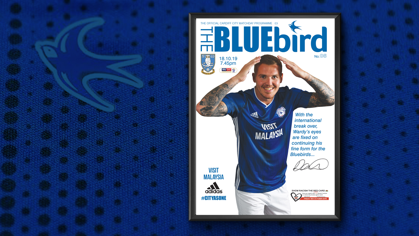 Danny Ward Bluebird Cover